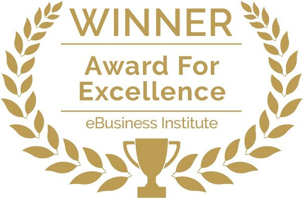 eBusiness Institute Award For Excellence